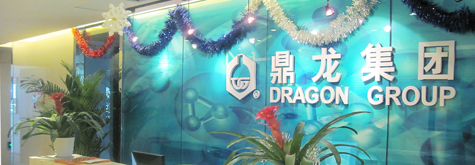 Dragon Chemical Europe GmbH